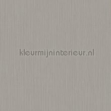 Meru tapet Hookedonwalls Exotique 17207