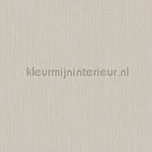 Meru tapet Hookedonwalls Exotique 17208