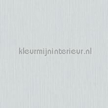 Meru tapet Hookedonwalls Exotique 17210