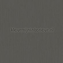 Meru tapet Hookedonwalls Exotique 17211