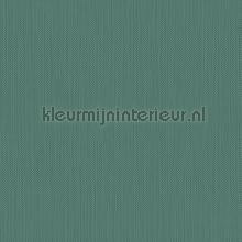Meru tapet Hookedonwalls Exotique 17212