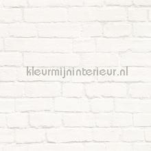 67925 papier peint Esta home Fab 142-138-532