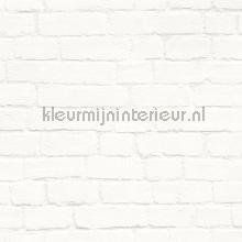 67926 papier peint Esta home Fab 142-138-533