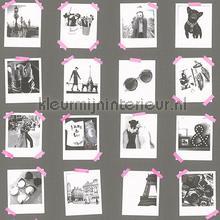 Polaroid foto donkergrijs behang Esta home tieners