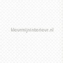 Kleine panda faces grijs tapet Noordwand Fabulous World 67101-2