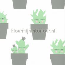 Kactus grijs mint behang Noordwand meisjes