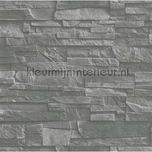 78361 wallcovering Rasch Factory III 475029
