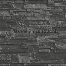 78362 wallcovering Rasch Factory III 475036