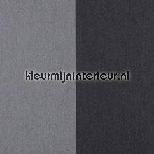 Grand Stripe Noire de Lune et Dauphin papel pintado Arte Flamant Suite II 30005