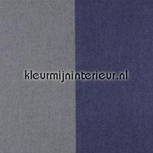 Grans Stripe Dauphin et Nocturne papel de parede Arte Flamant Suite II 30006