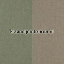 Grand Stripe Olive et Artichaut papel de parede Arte Flamant Suite II 30009