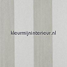 Light Stripe Winter Resort papel de parede Arte Flamant Suite II 30011