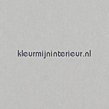 Lin Bone papel de parede Arte Flamant Suite II 30118