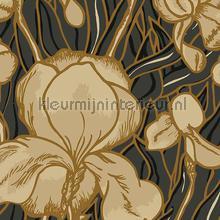 Iris papel de parede Arte Flavor Paper for Arte FP1041