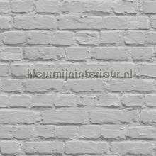 Geschilderde bakstenen grijs behang Dutch Wallcoverings Stenen