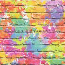 Fel gekleurde stenen papel pintado Dutch Wallcoverings Wallpaper creations