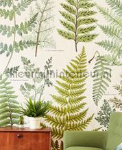 Geonature Herbarium Green fotobehang Eijffinger Geonature 366104