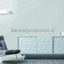 omega Grey wallcovering Dutch First Class Glasshouse 90271