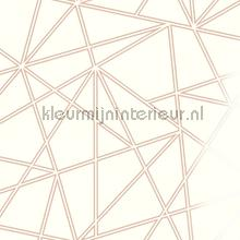 omega Rosegold Cream wallcovering Dutch First Class Glasshouse 90273