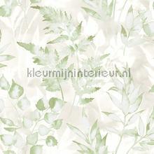 cedar Green Silver wallcovering Dutch First Class Glasshouse 90291
