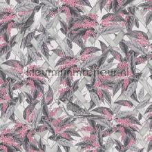 brassica Pink Grey wallcovering Dutch First Class Glasshouse 90332