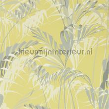 palm house tapet Sanderson Glasshouse 216642