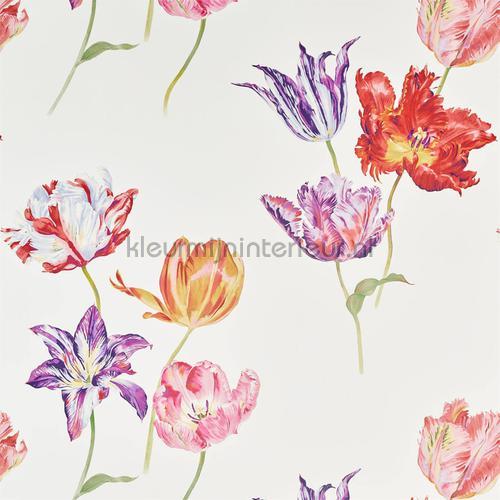 tulipomania tapet 216666 Cottage Sanderson