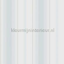 Luxueuze streep papier peint Dutch First Class spécial