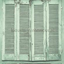 Shutter behang vaalgroen Esta home Trendy Hip