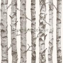 Berkenbomen behang Esta home Trendy Hip