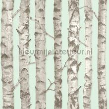 Berkenbomen licht mint behang Esta home Trendy Hip