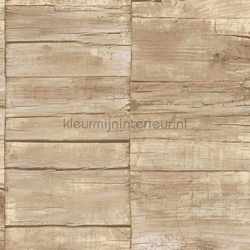 Cool wood tapet g45340 Grunge Noordwand
