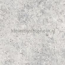 Metal surface wallcovering Noordwand Vintage- Old wallpaper