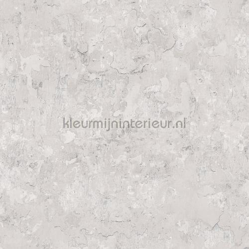 Plaster tapet g45348 Grunge Noordwand