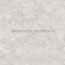 Plaster tapet Noordwand Vintage Gamle