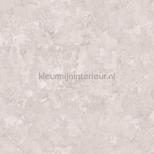 Plaster tapet g45349 Grunge Noordwand