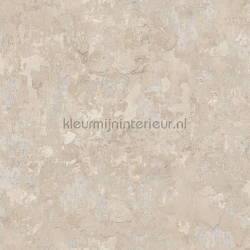 Plaster tapet g45350 Grunge Noordwand