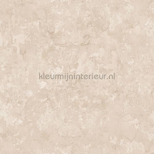 plaster tapet g45351 Grunge Noordwand