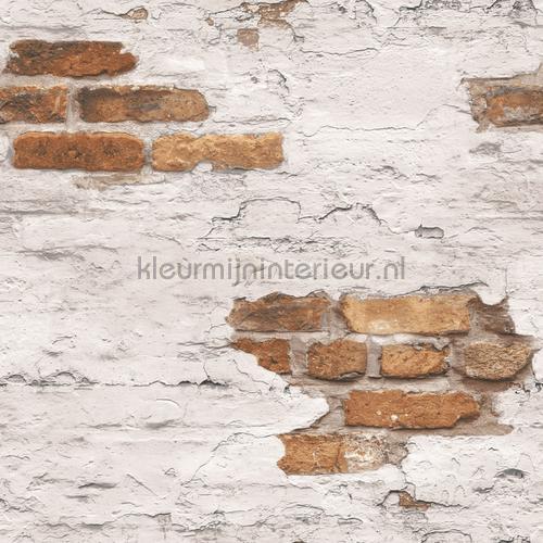 Plastered brick wall tapet g45352 Grunge Noordwand