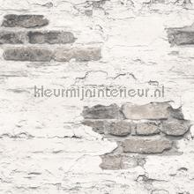 Plastered brick wall wallcovering Noordwand wood
