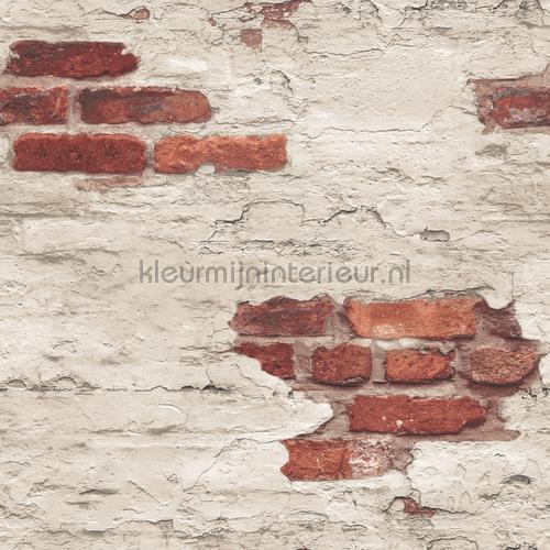 Plastered brick wall tapet g45354 Grunge Noordwand