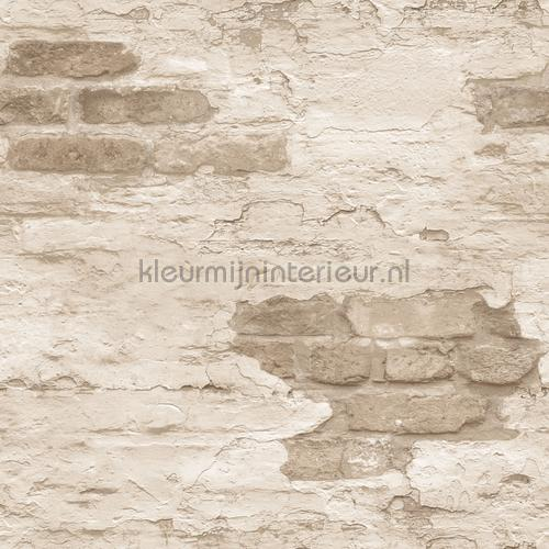 Plastered brick wall papel pintado g45355 niños Noordwand