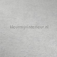 89112 papier peint Behang Expresse Hacienda 5415-31
