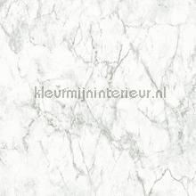 Geaderd marmer papier peint AS Creation Helemaal van nu 361573