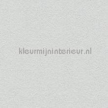 77952 papier peint AS Creation Helemaal van nu 361683