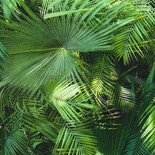 Groene palmen behaang 362001 Behaang tob 15 AS Creation