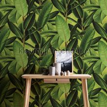 Groene planten behang AS Creation Modern Abstract