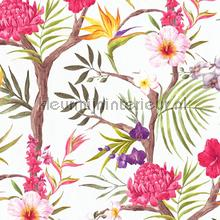 77903 wallcovering AS Creation girls