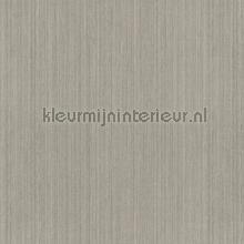 naxos tapet Khroma Helium wil405