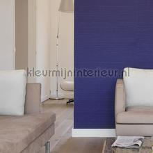 Kandy silk projectkwaliteit papel de parede Elitis Her Majesty HPC cv-104-21